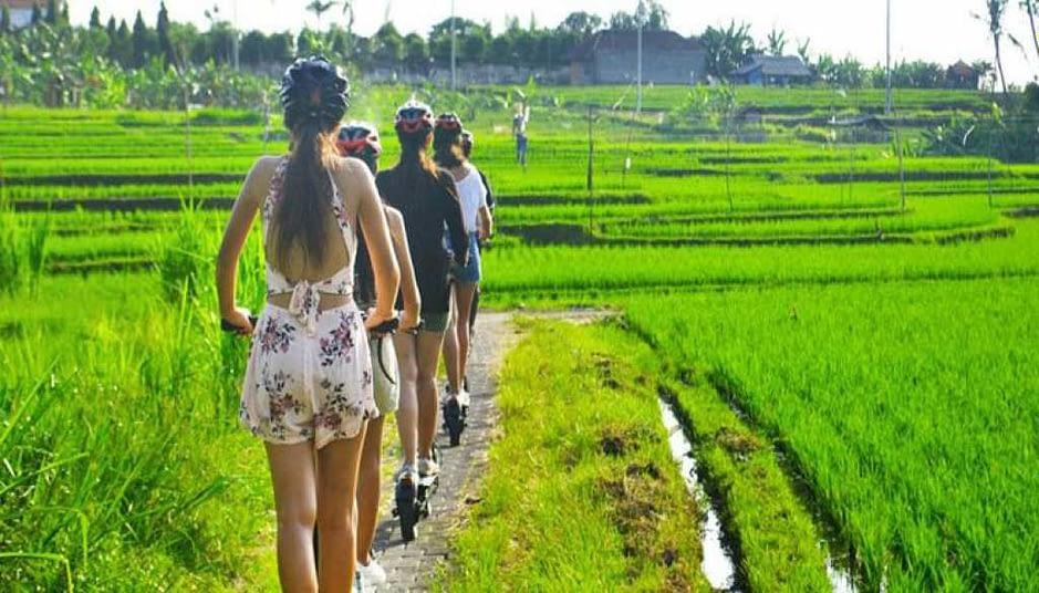 Sustainable internship Canngu Bali
